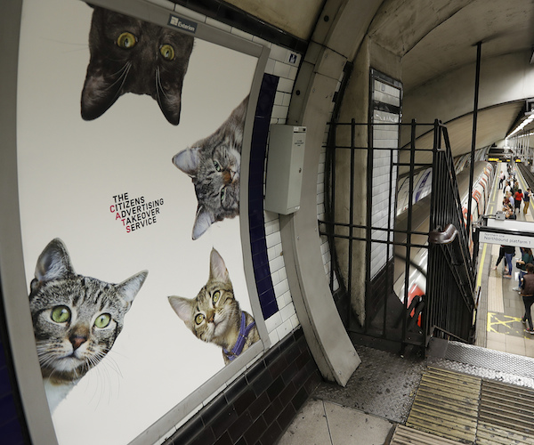 Pictures of cats instead of advertising is seen at the Clapham Common Tube station in London, Tuesday, Sept. 13, 2016. 68 adverts in the station have been replaced with the photos which feature stray cats from two rescue charities, Battersea Dogs and Cats Home and Cats Protection. One of the posters shows cats sent in by members of the public, who each donated £100 to make their pet famous. (AP Photo/Frank Augstein)