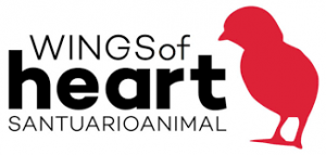 wings of heart, santuario animal