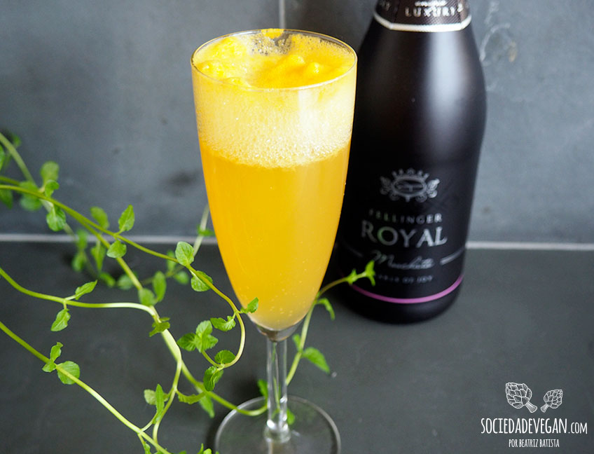 mimosa-vegan-002