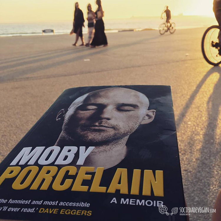 moby-porcelain