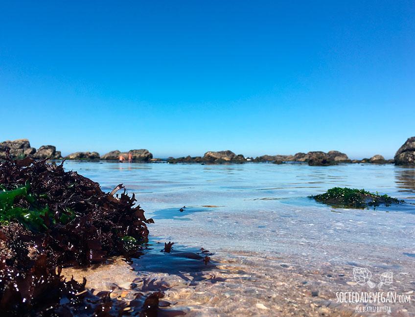 agua-praia